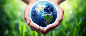 Why every business should have a sustainability policy